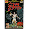 The Silver Surfer Annual Nº 2 /Marvel Comics